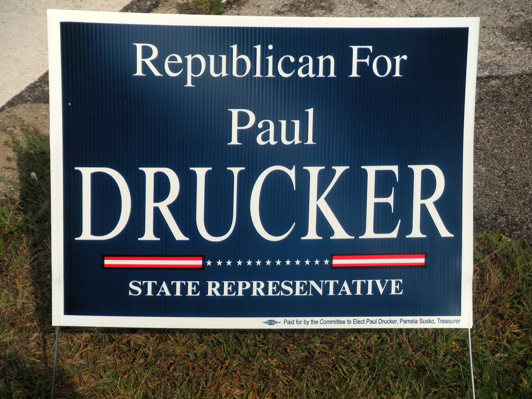 Do Political Campaign Signs Influence Your Vote How About